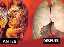 como purificar los pulmones